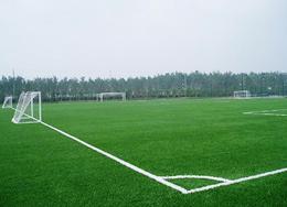 笼式足球解决方案