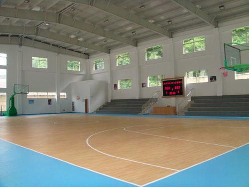 枫木纹塑胶地板/运动地板