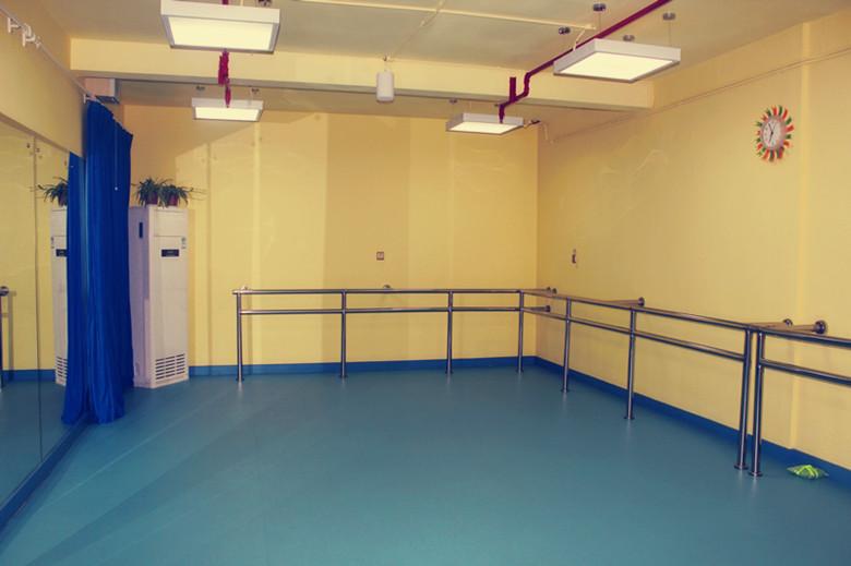 舞蹈专用塑胶地板/运动地胶