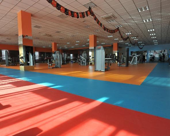 健身房专用运动地板-幸运石纹