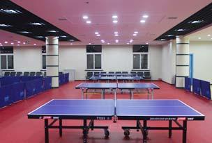 乒乓球场地胶工程解决方案