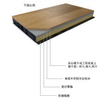 哈立群Activity弹性地板