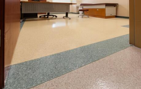 健丽龙同质透心地板